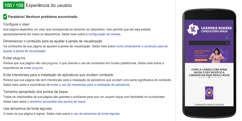page-speed-google-leandra-soares-consultora-ninja